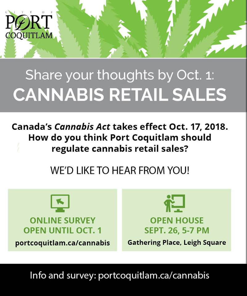 Share Your Thoughts on Cannabis Retail Sales by Oct. 1