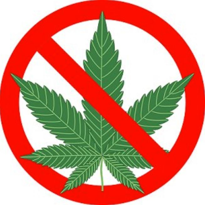 Cannabis is Now Legal in Canada but Still Prohibited in SD43