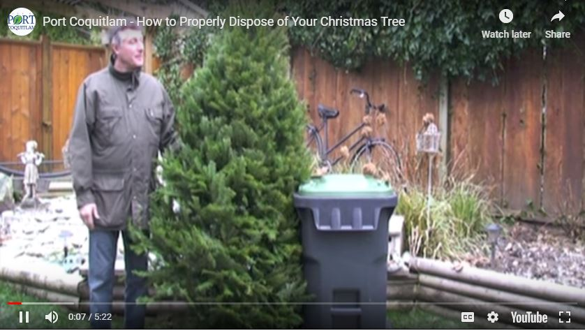 Recycle Your Christmas Tree & More Over the Holidays – Jan. 5-6